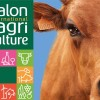 SALON INTERNATIONAL DE L'AGRICULTURE 2019 (56 ÈME)
