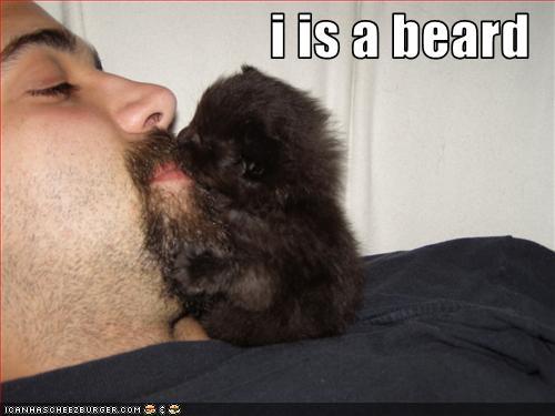 Funny Beards 05