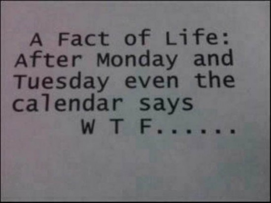WTF - A Fact Of Life