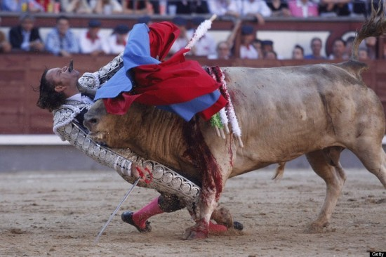 During Bullfight