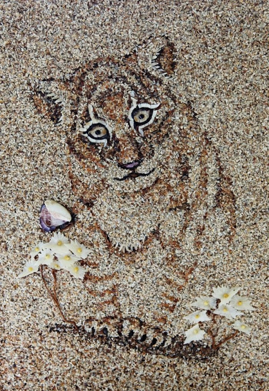 Beautiful Mosaics of Sand and Shells