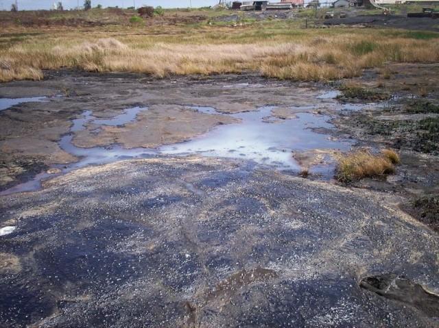 The Largest Natural Deposit of Asphalt